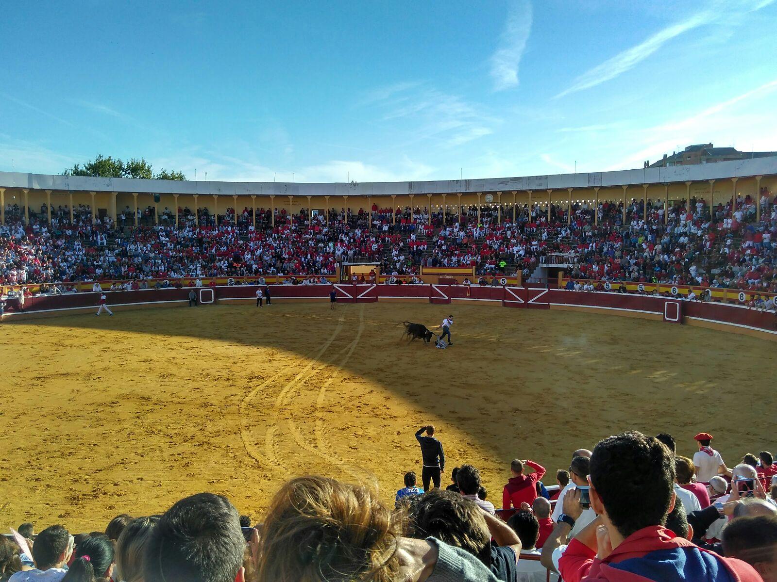 Fiestas Tudela 2017_32