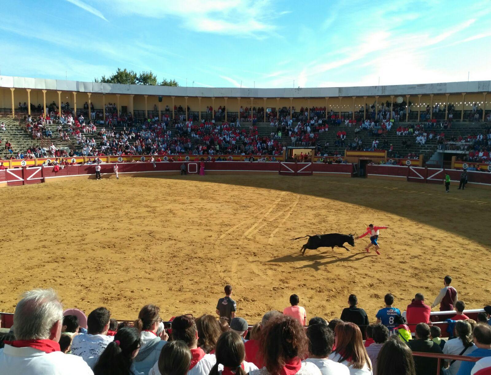 Fiestas Tudela 2017_54